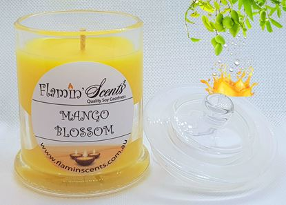 Picture of MANGO BLOSSOM CANDLE